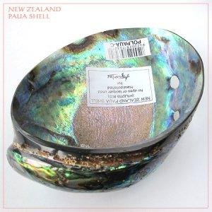画像4: 天然ニュージーランド・パウアシェル